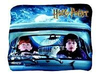 Memorex Harry Potter Harry and Ron - Musematte